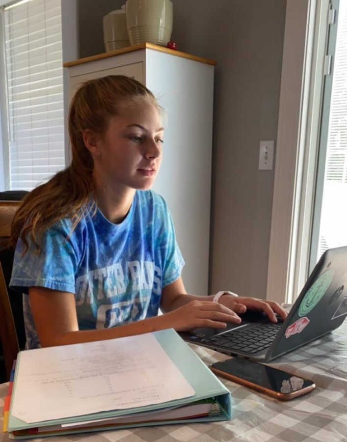 This is sophomore Emma Need. She is doing her E-learning assignments and staying busy at home. She enjoys E-learning but she said she would rather be in school with her friends right now.