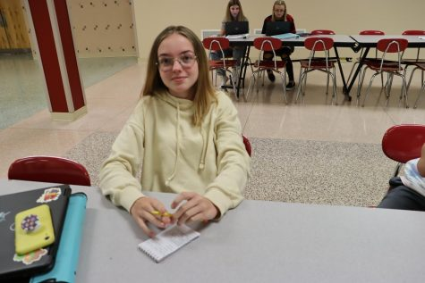 Riley Miller who is a sophomore at Twin Lakes High School says her favorite school lunch is also Mozzarella sticks.